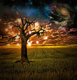 Bulb tree of ideas. With surreal space background Royalty Free Stock Image