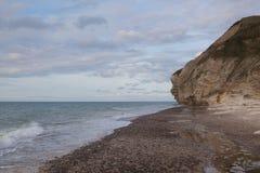 Bulbjerg jedyna ptasia faleza na Duńskim stałym lądzie, Jutland, d zdjęcie royalty free