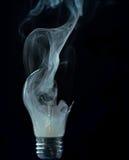 Bulbo Fotografia de Stock