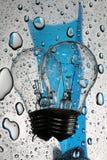 Bulbo com reflexão e gotas no vidro Imagem de Stock Royalty Free