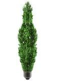 Bulbo de Eco imagen de archivo