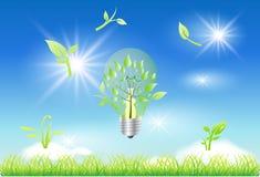Bulbo de Eco Imagens de Stock Royalty Free