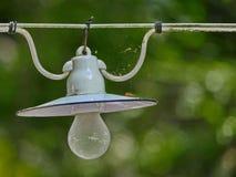 Bulbo de lâmpada antigo no cabo com bokeh verde da natureza no fundo Imagem de Stock Royalty Free