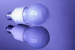 Bulbo de lâmpada de poupança de energia Foto de Stock
