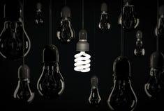 Bulbo de poupança de energia de Eco que ilumina os bulbos incandescentes que penduram sobre Fotografia de Stock