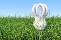 Bulbo del ahorro en la hierba verde contra el cielo azul, representación 3D Fotografía de archivo libre de regalías