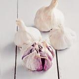 Bulbo del ajo y clavos de ajo en el fondo de madera blanco, primer Foto de archivo libre de regalías