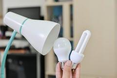 Bulbo del LED - selección el bulbo a utilizar con la lámpara Imagen de archivo libre de regalías