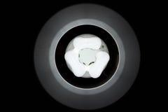 Bulbo del tungsteno que brilla intensamente Imagen de archivo libre de regalías