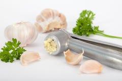 Bulbo do alho e cravos-da-índia de alho Imagem de Stock
