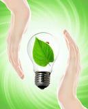 Bulbo favorable al medio ambiente imagen de archivo libre de regalías