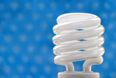 Bulbo fluorescente compacto Imagens de Stock