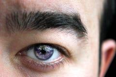 Bulbo oculare del mondo Fotografia Stock Libera da Diritti