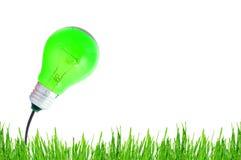 Bulbo verde de la energía Foto de archivo