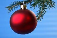 Bulbo vermelho e coníferas do Natal isolados no azul Fotos de Stock