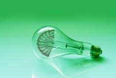 Bulbo y dinero de la luz eléctrica Imágenes de archivo libres de regalías