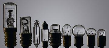 Bulbos Fotos de archivo libres de regalías