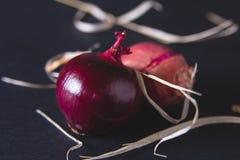 Bulbos da cebola vermelha na tabela preta Fotos de Stock