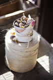 Bulbos de flor da mola no potenciômetro cerâmico envolvido na tela na guita Imagem de Stock Royalty Free