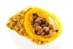 Bulbos de flor en bolso Imagen de archivo libre de regalías