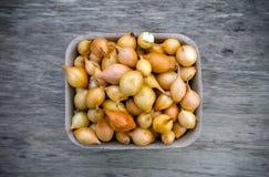 Bulbos de la cebolla para sembrar, material vegetal Fondo vegetal fotografía de archivo libre de regalías