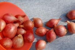 Bulbos de la cebolla y el tazón de fuente Imagen de archivo