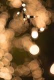 Bulbos decorados na árvore na noite com número de Hugh de behin do bokeh Imagens de Stock Royalty Free