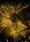 Bulbos decorados na árvore na noite com número de Hugh de behin do bokeh Imagens de Stock