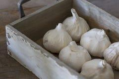 Bulbos del ajo en caja Fotos de archivo