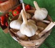 Bulbos del ajo en cesta Imagenes de archivo