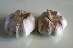 Bulbos del ajo en el banco blanco Foto de archivo libre de regalías
