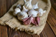 Bulbos del ajo en fondo de madera Imagen de archivo