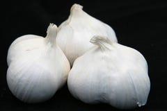 Bulbos del ajo en negro imágenes de archivo libres de regalías