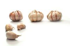 Bulbos del ajo en tres posiciones, aisladas respecto a blanco Imágenes de archivo libres de regalías