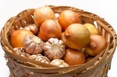 Bulbos del ajo y de la cebolla Foto de archivo libre de regalías