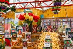 Bulbos del tulipán en el mercado flotante famoso de la flor en Amsterdam imagen de archivo