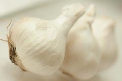 Bulbos do alho Imagens de Stock Royalty Free