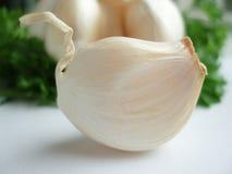 Bulbos do alho fotografia de stock