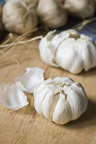 Bulbos do alho na tabela de madeira Imagem de Stock