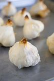 Bulbos do alho Roasted em uma bandeja roasting Imagens de Stock Royalty Free