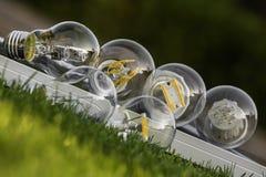 Bulbos do diodo emissor de luz, do halogênio e do tungstênio no painel solar, alguns nos gras fotografia de stock