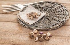 Bulbos do Ixia em uma tabela de madeira Foco seletivo Foto de Stock Royalty Free