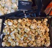 Bulbos fumado do alho do carvalho grandes Fotos de Stock