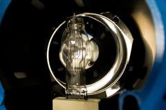Bulbos incandescentes Fotos de archivo libres de regalías