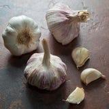 Bulbos maduros del ajo con uces par de clavos pelados Foto de archivo libre de regalías