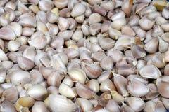 Bulbos orgánicos frescos del ajo foto de archivo libre de regalías