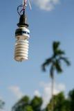 Bulbos viejos ligeros ahorros de energía Fotografía de archivo libre de regalías