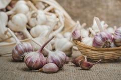 Bulbos y clavos del ajo orgánico natural en una estera de lino y en una cesta hecha en casa foto de archivo libre de regalías