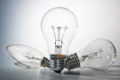 Bulbs. Three bulbs on white background royalty free stock photos