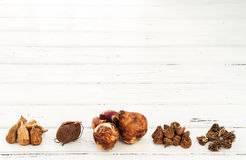 Bulbs and corms. White wooden board with bulbs and corms of (left to right): Freesia,Cyclamen, Narcissus, Anemone and Ranunculus Stock Image